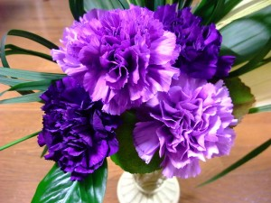 Florigene's Moondust carnations, one of several violet and blue varieties they've created with genetic engineering. Photo by Pagemoral and licensed under the creative commons. Click to see the photo in its original context with license information